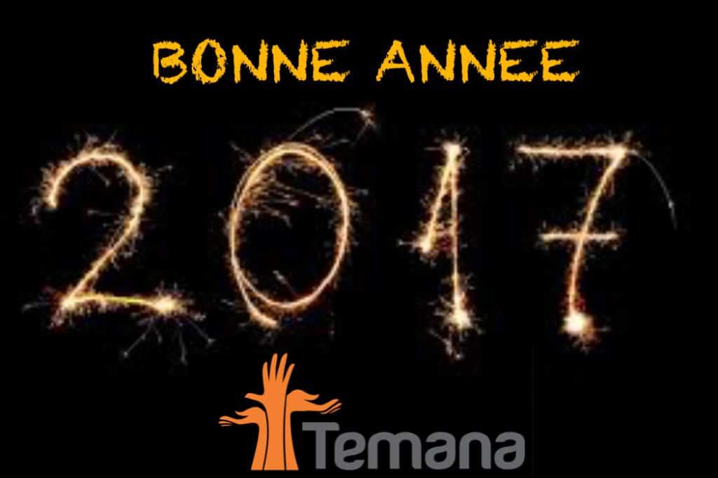 TEMANA vous souhaite une Bonne Année 2017