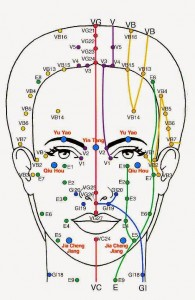 les différents méridiens du visage selon le massage kobido