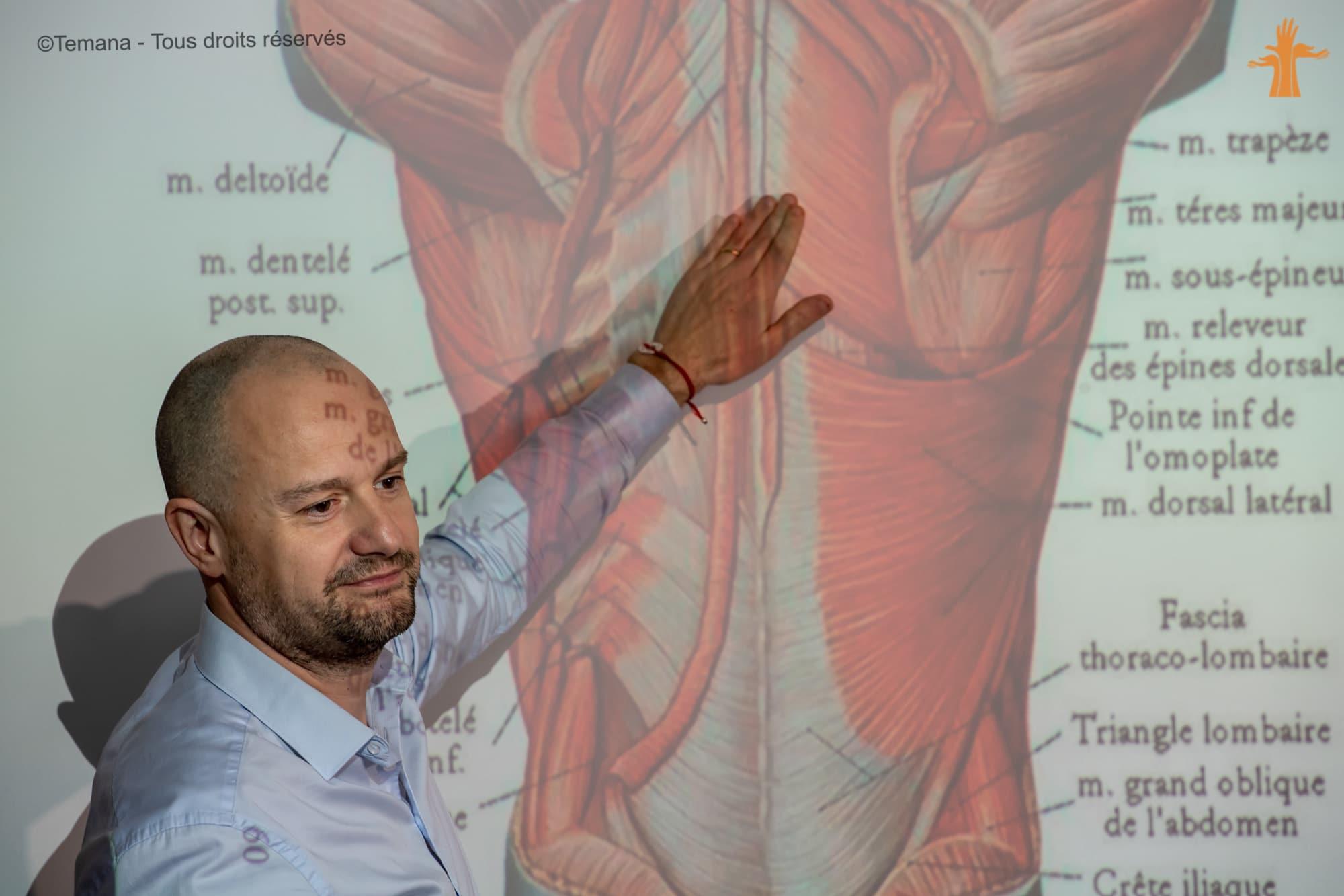 Vente, Conseils, Anatomie palpatoire – Bloc de compétence N°3